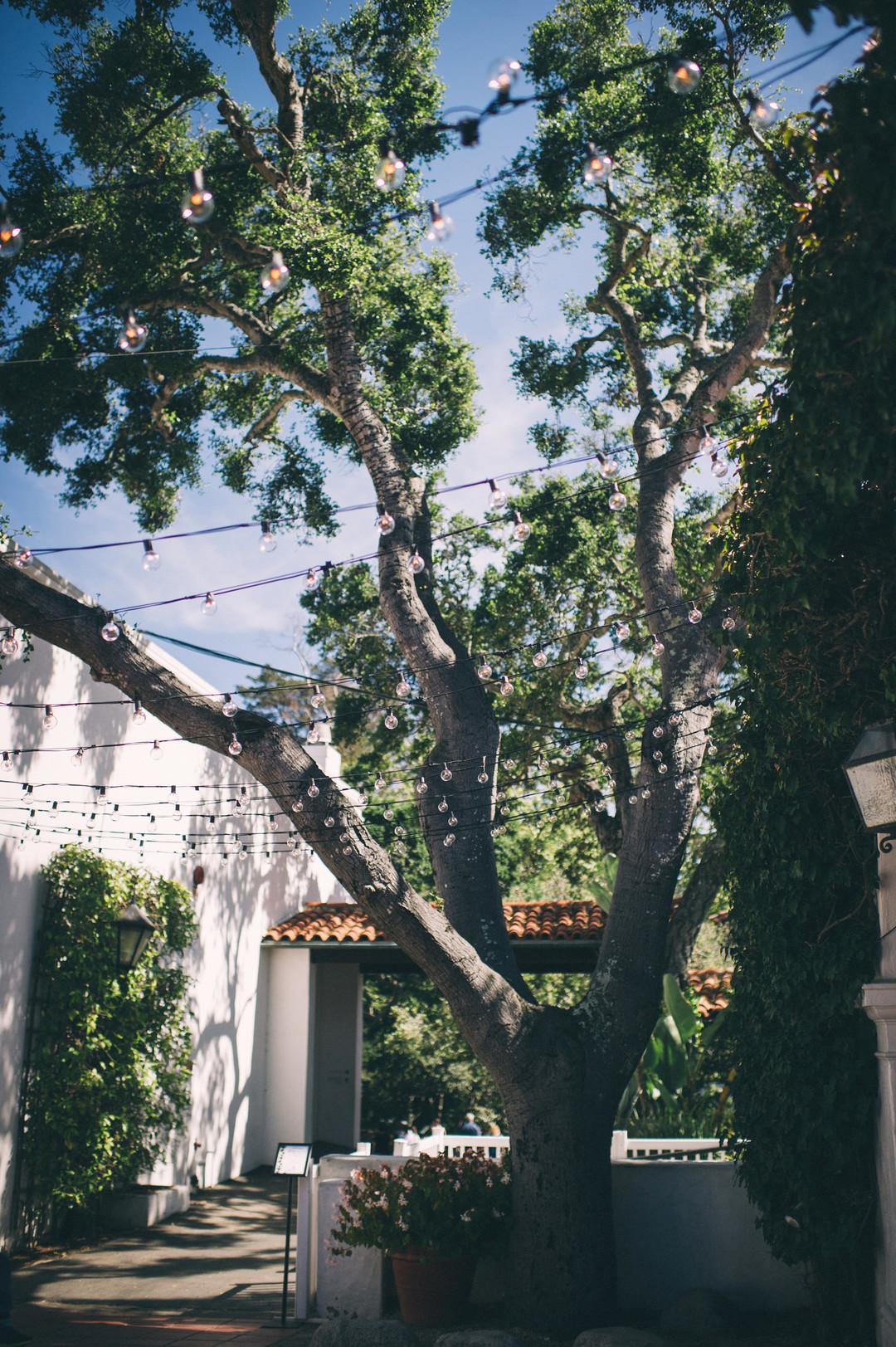 www.santabarbarawedding.com | Sarah Katherine Davis Photography | Santa Barbara Museum of Natural History | Wild Heart Events | Bright Event Rentals | Lights in the Trees