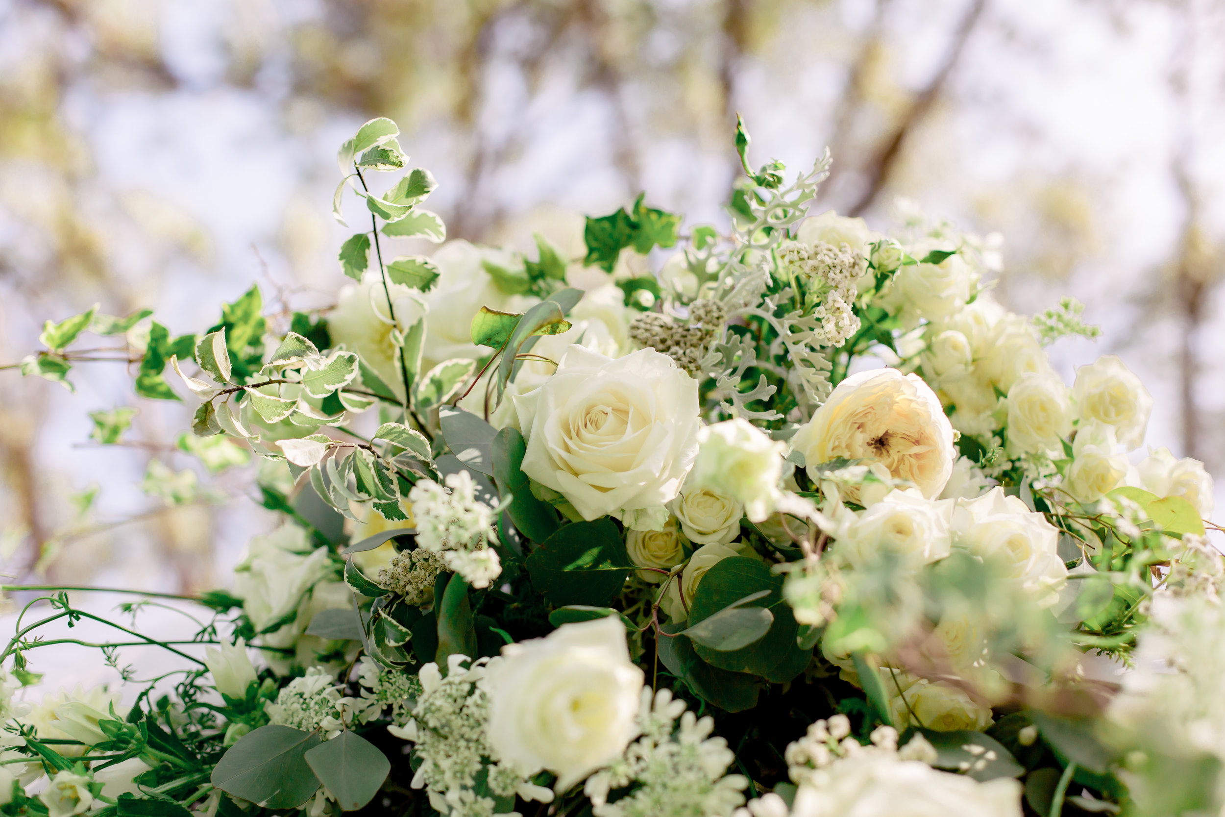 www.santabarbarawedding.com | Rewind Photography | Riviera Mansion | Alegria by Design | Margaret Joan Florals | White Flower Arrangement