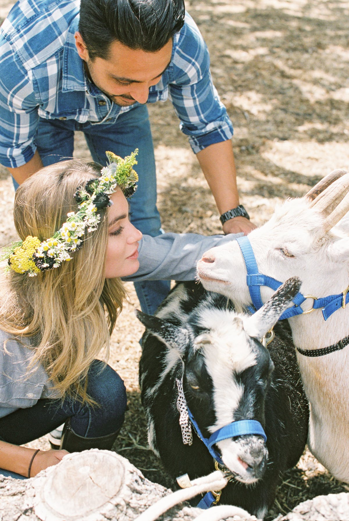 www.santabarbarawedding.com | Michael + Anna Costa Photography | Refugio Ranch | Alegria by Design | Like a Letter Videography | Anna Le Pley Taylor | The Farm Stead | Couple with the Goats