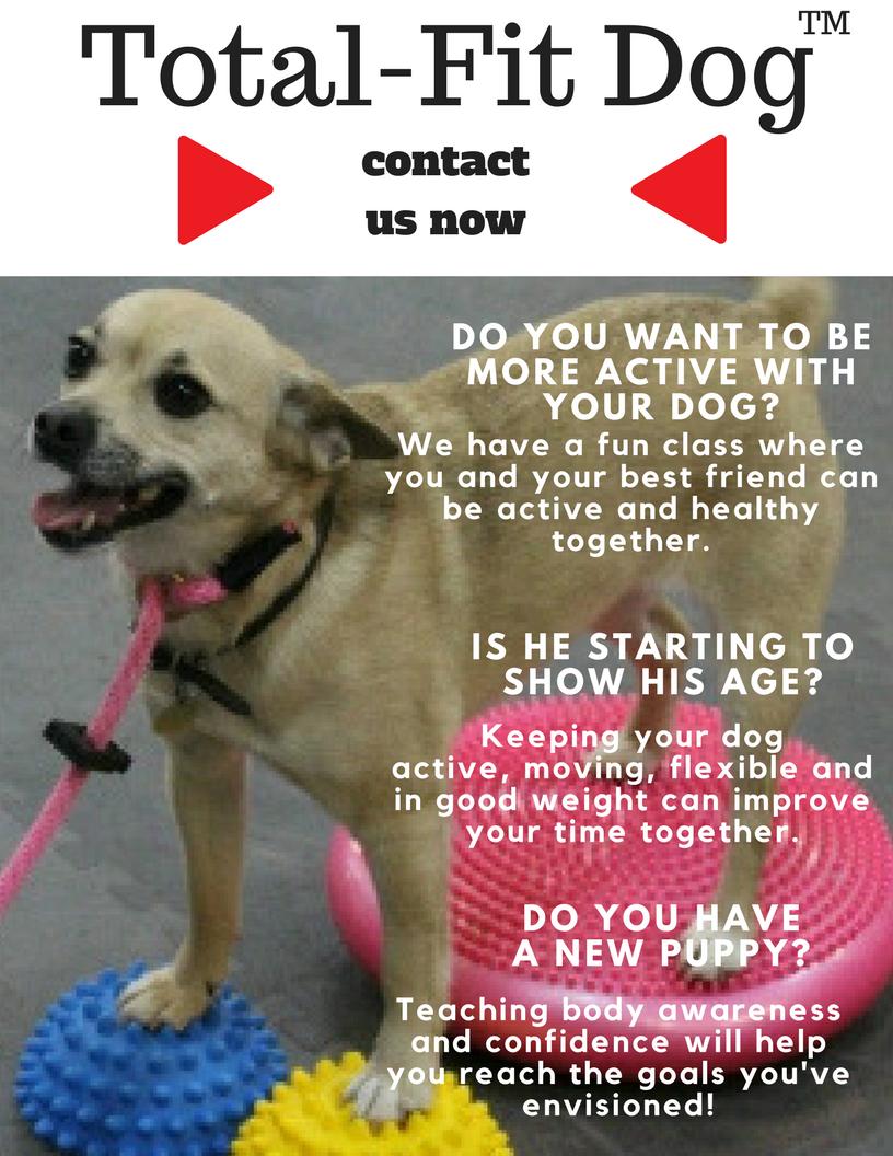 Total-Fit Dog PET (2).png