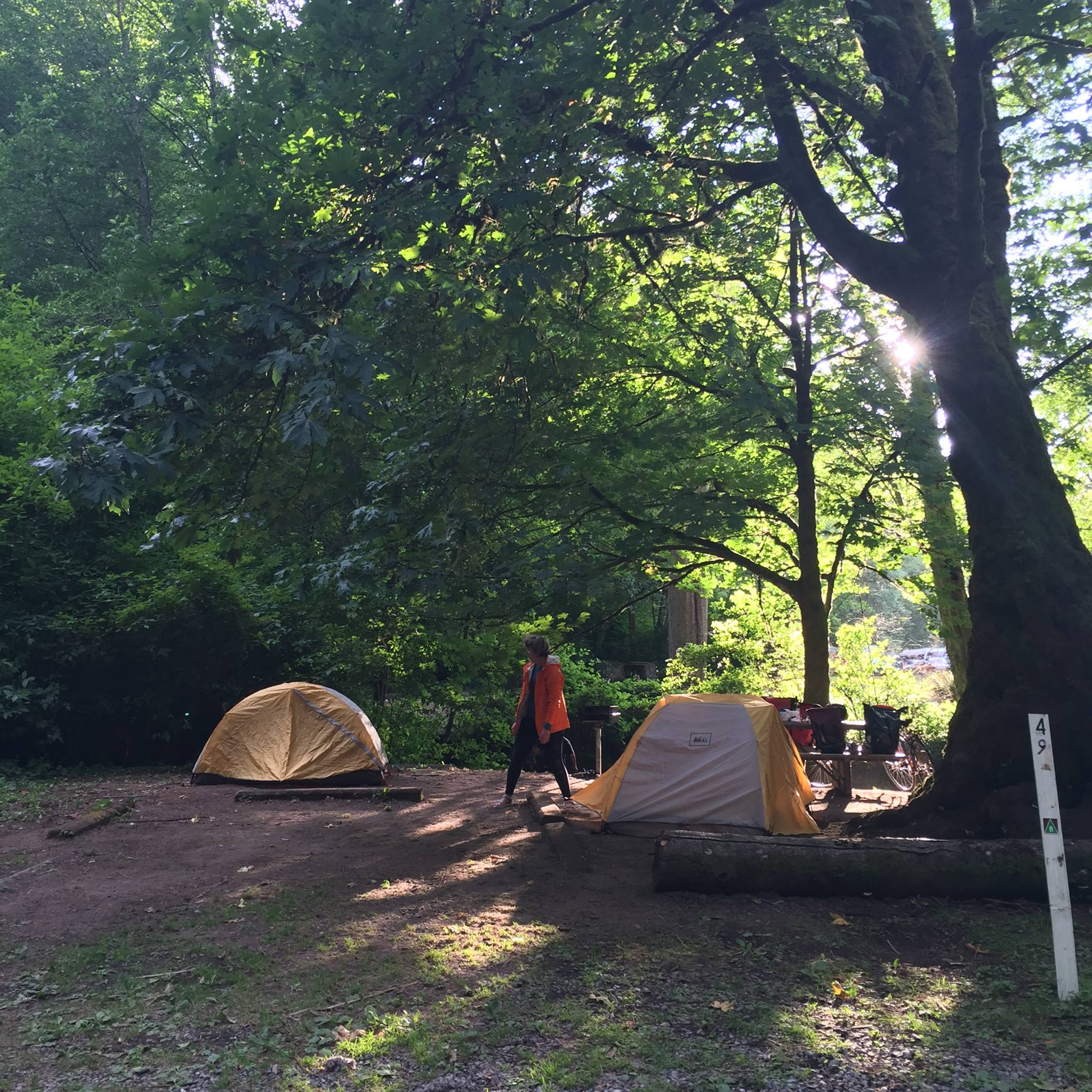 Saltwater Camping