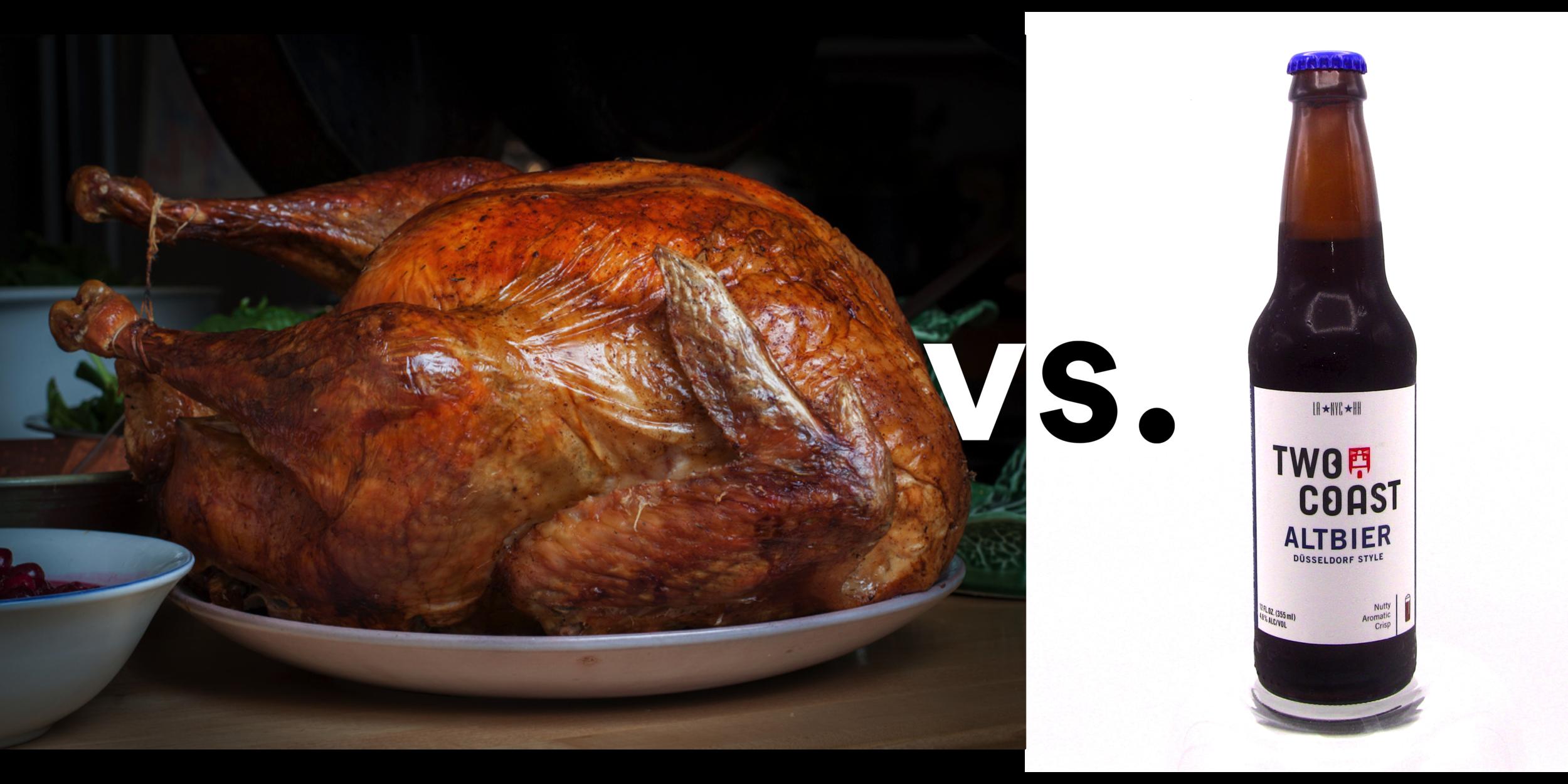 bird vs beer.png