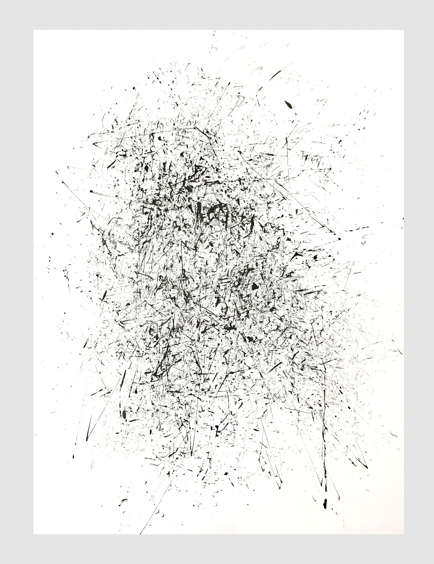 "Cherry bark drawing   ink on rag paper  22"" x 30""   $375"