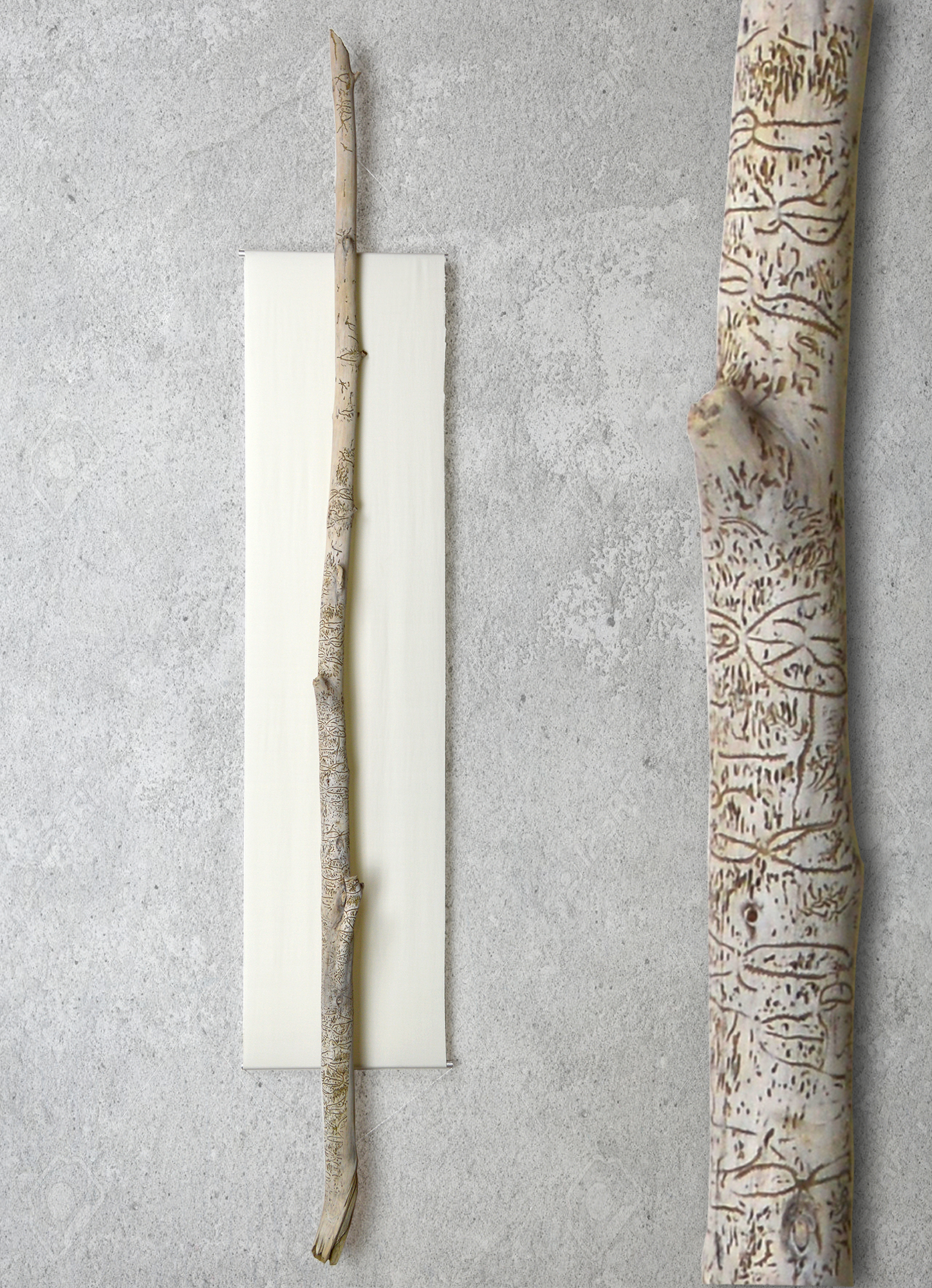 """Tribal Stick   unknown artist  64""""H x 11""""W Found on the Hudson river near Saugerties NY. This rare find has been carefully restored and is hung on a backdrop of off white spandex stretched between 2 aluminum rods.   $425"""