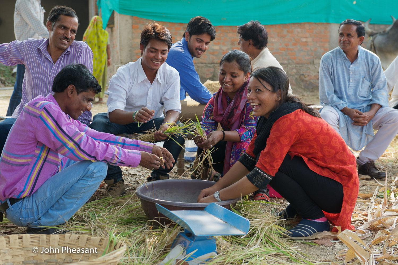 Measuring crop yields