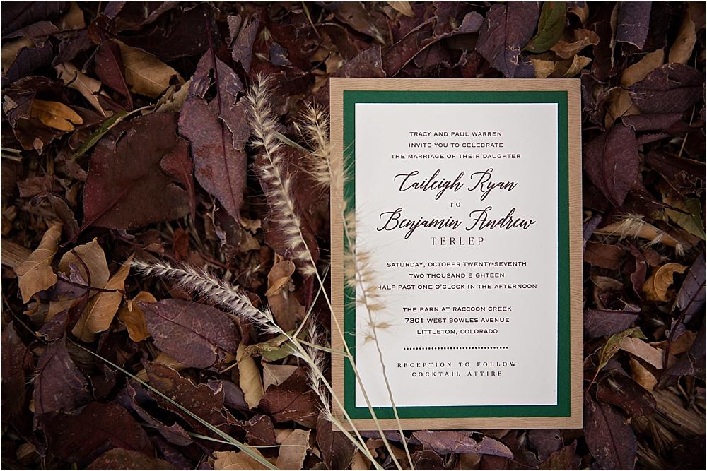 Caileigh and Ben's Wedding_0002.jpg