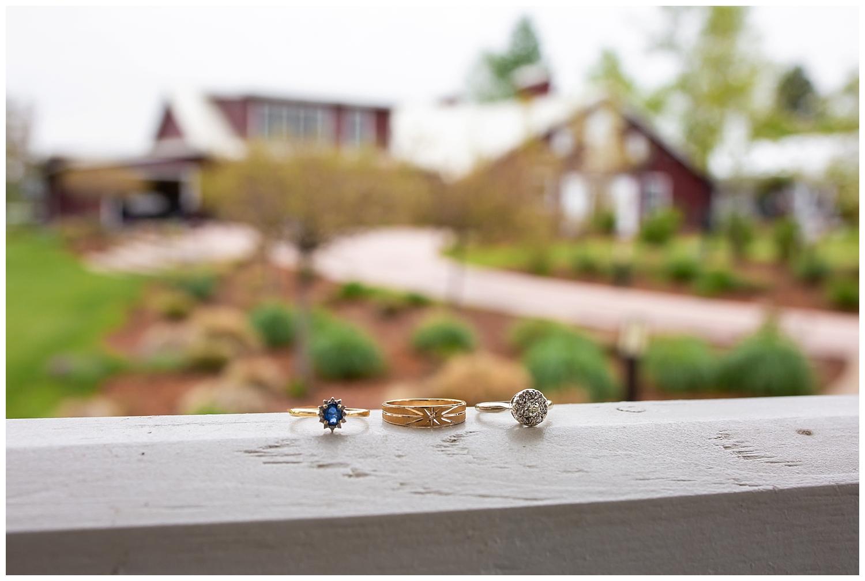Sara and Trevor's Raccoon Creek Wedding_0005.jpg