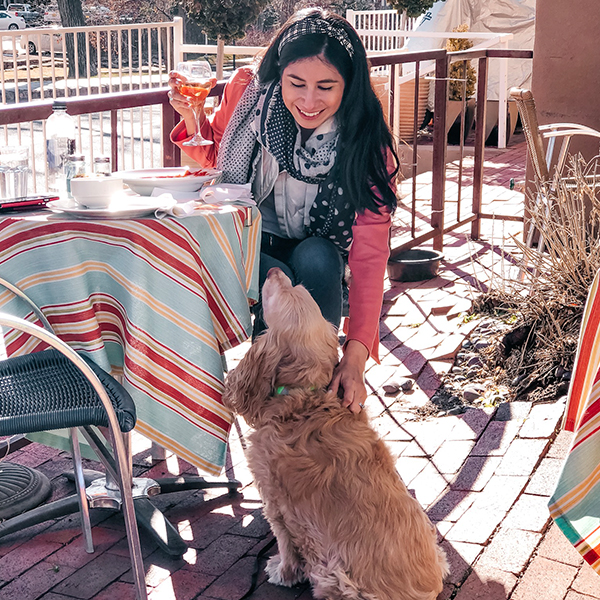 Pros and Cons on Traveling with a pet-vanessaindallas.com