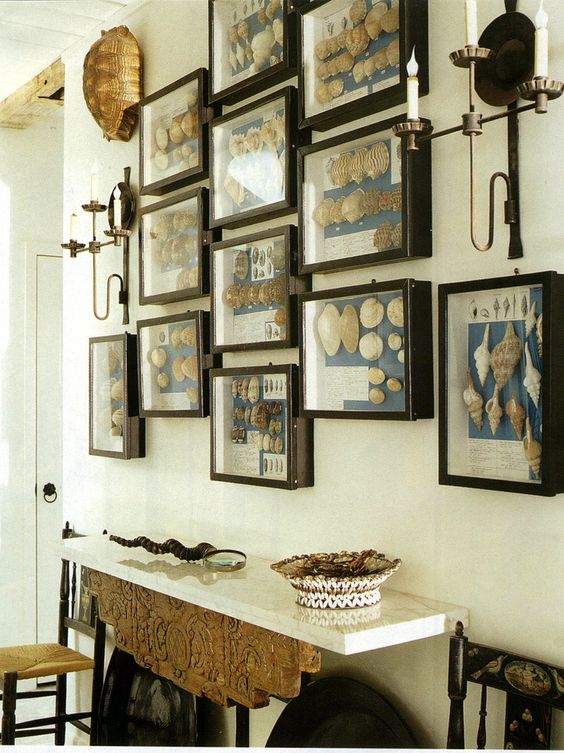 For the naturalist: display your collections and your passions! Your guests will want to know all about it.