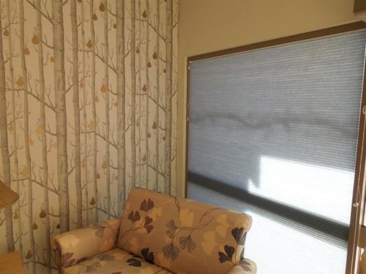 Curtains 477-533x400.jpg