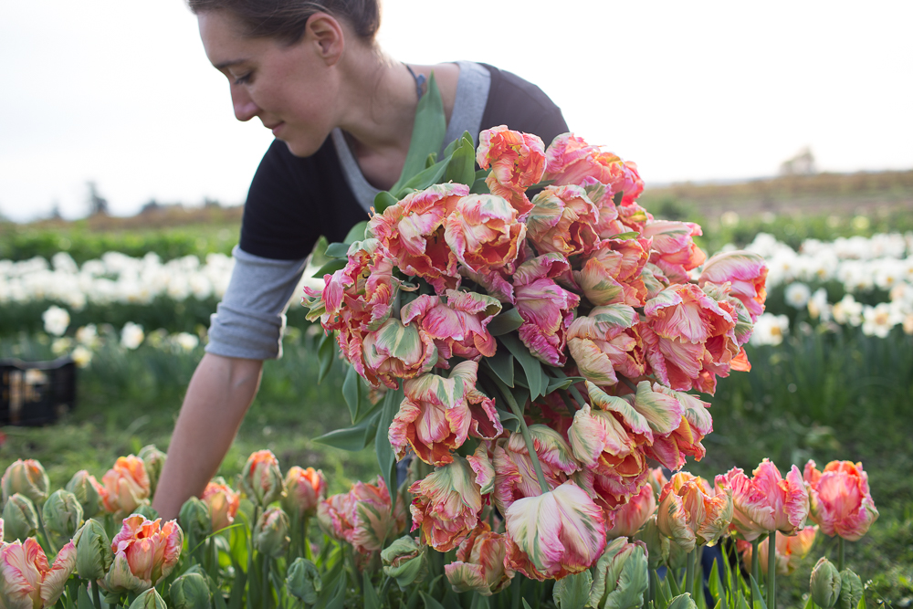 Erin From Floret Flowers