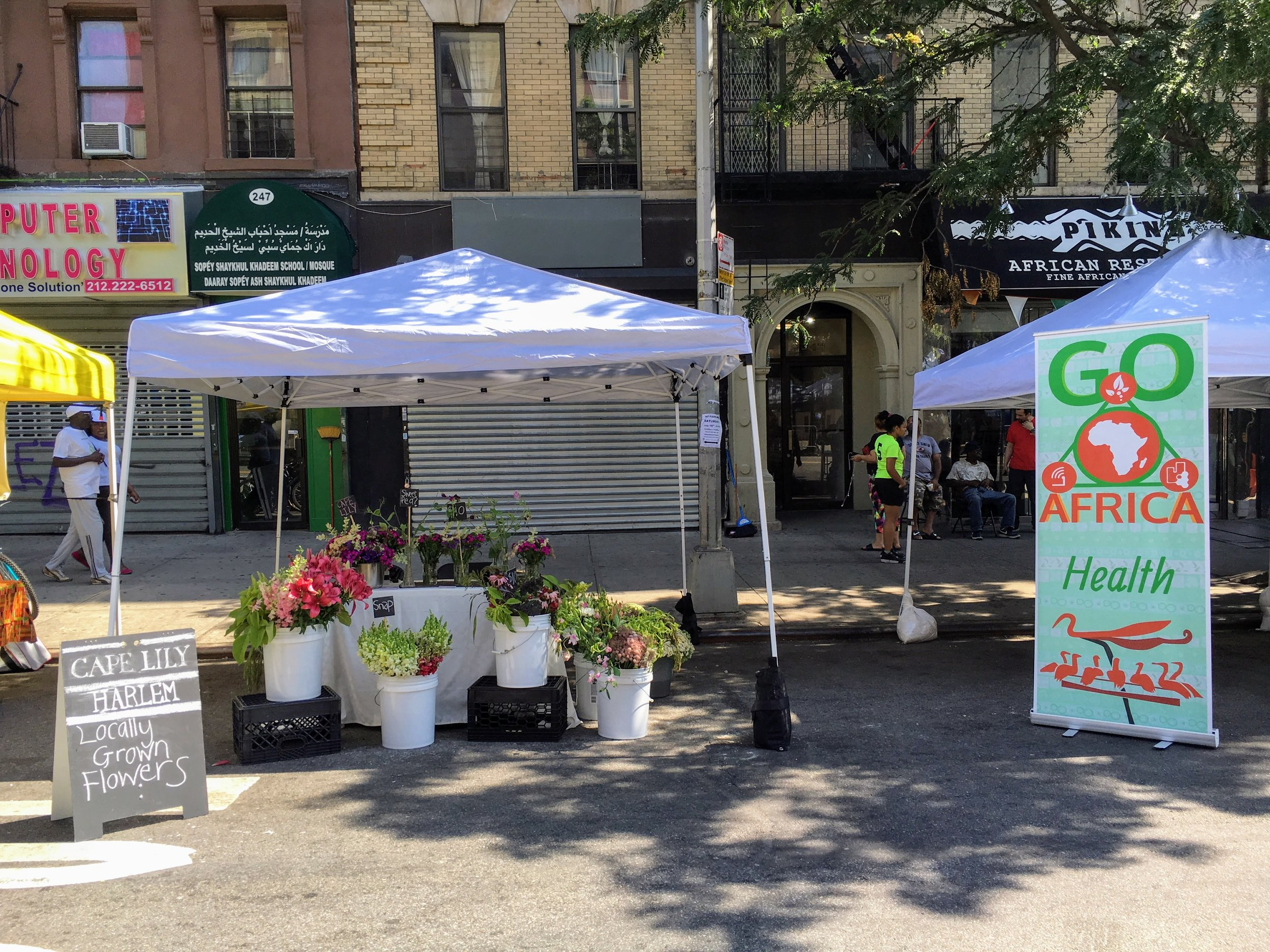 Flowers wilting at a Harlem Market
