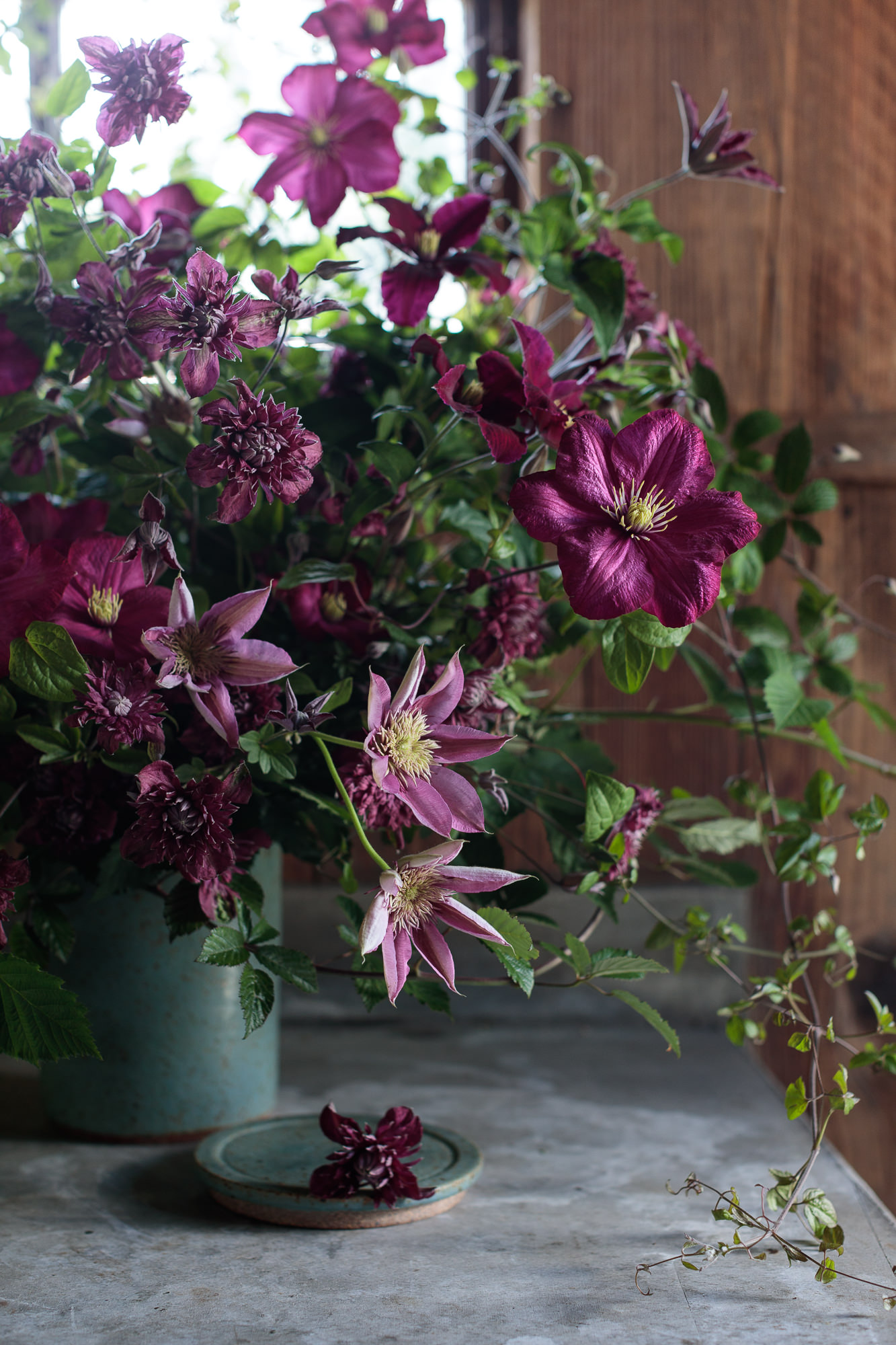 0027_Floral_160510_1879.jpg