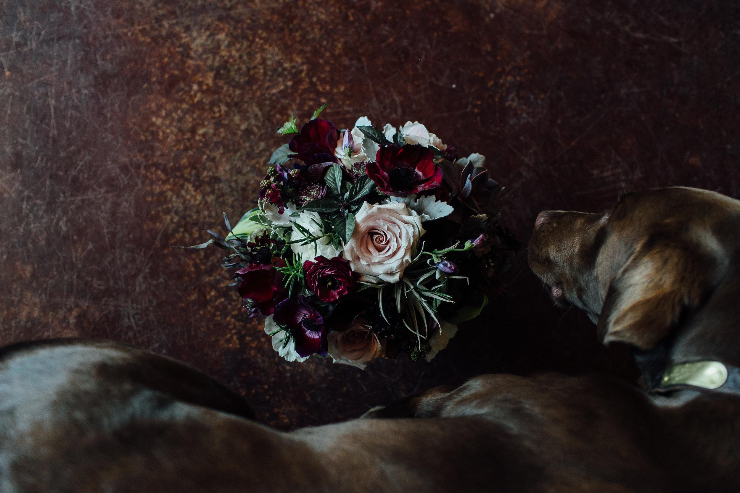 Tori Pinter Photography