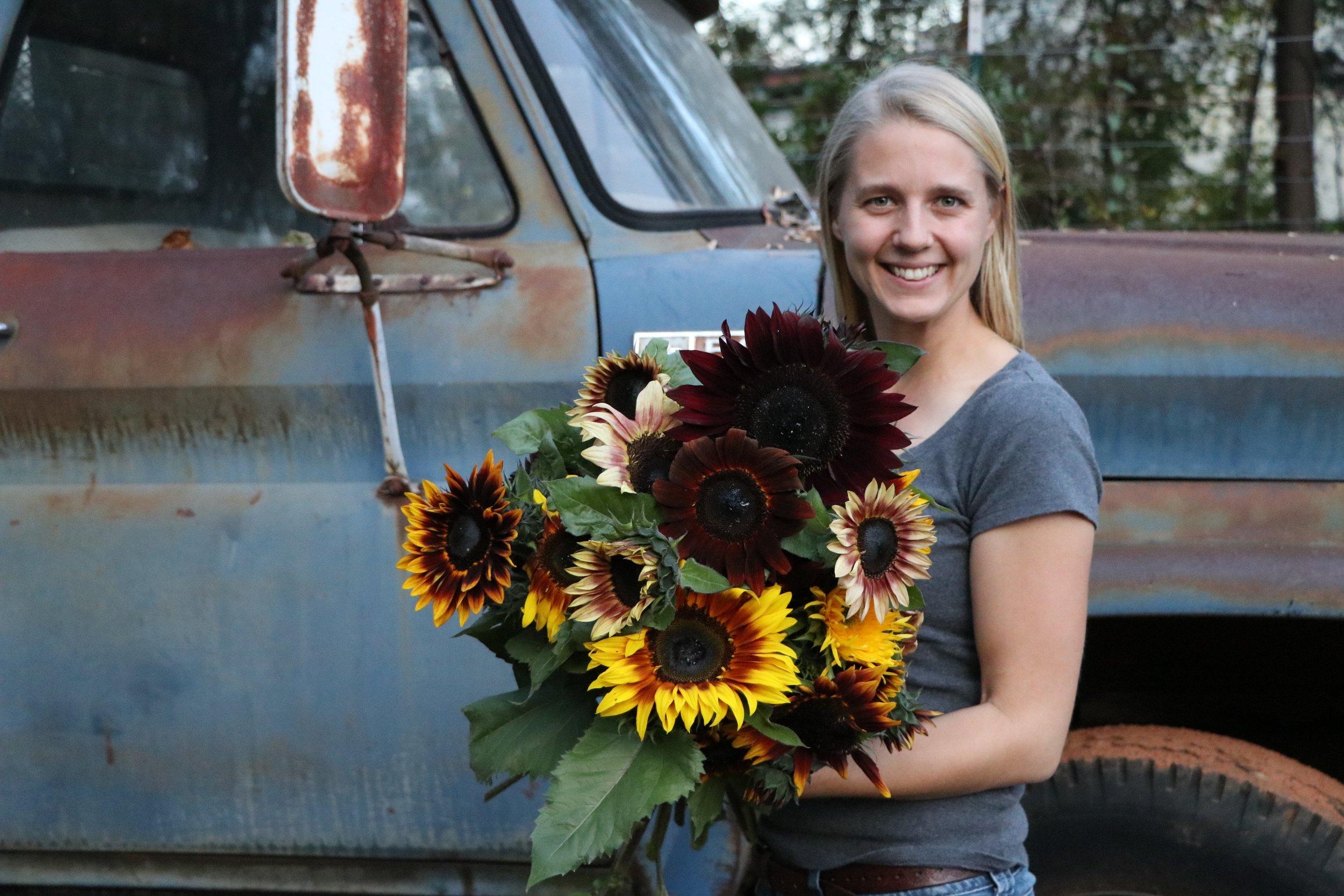 Sunflower Selections Varieties.jpg
