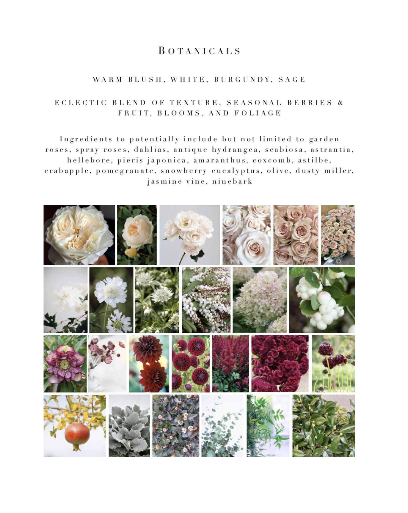 2-botanicals.jpg