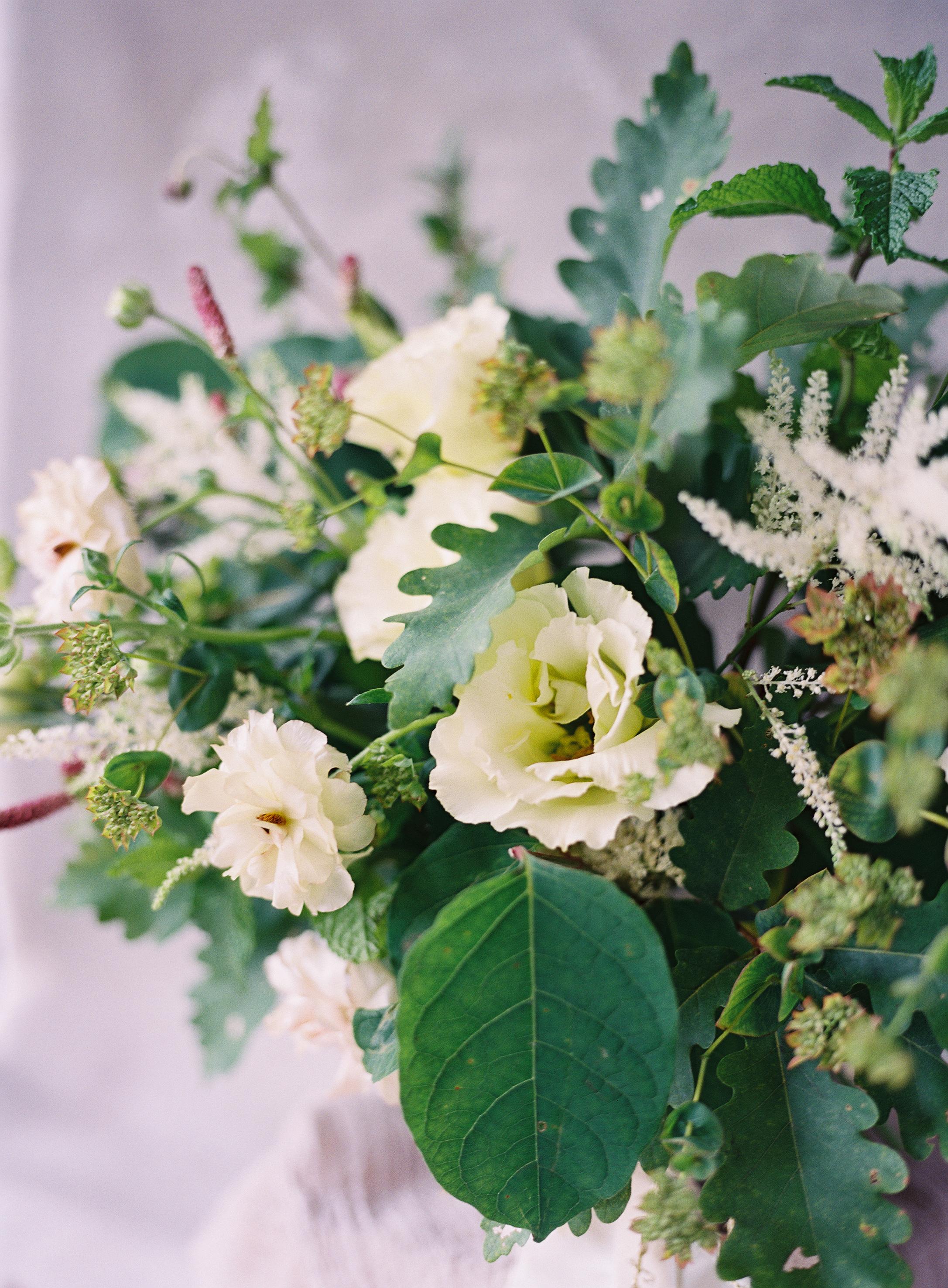 cottonandmagnolia9.jpg