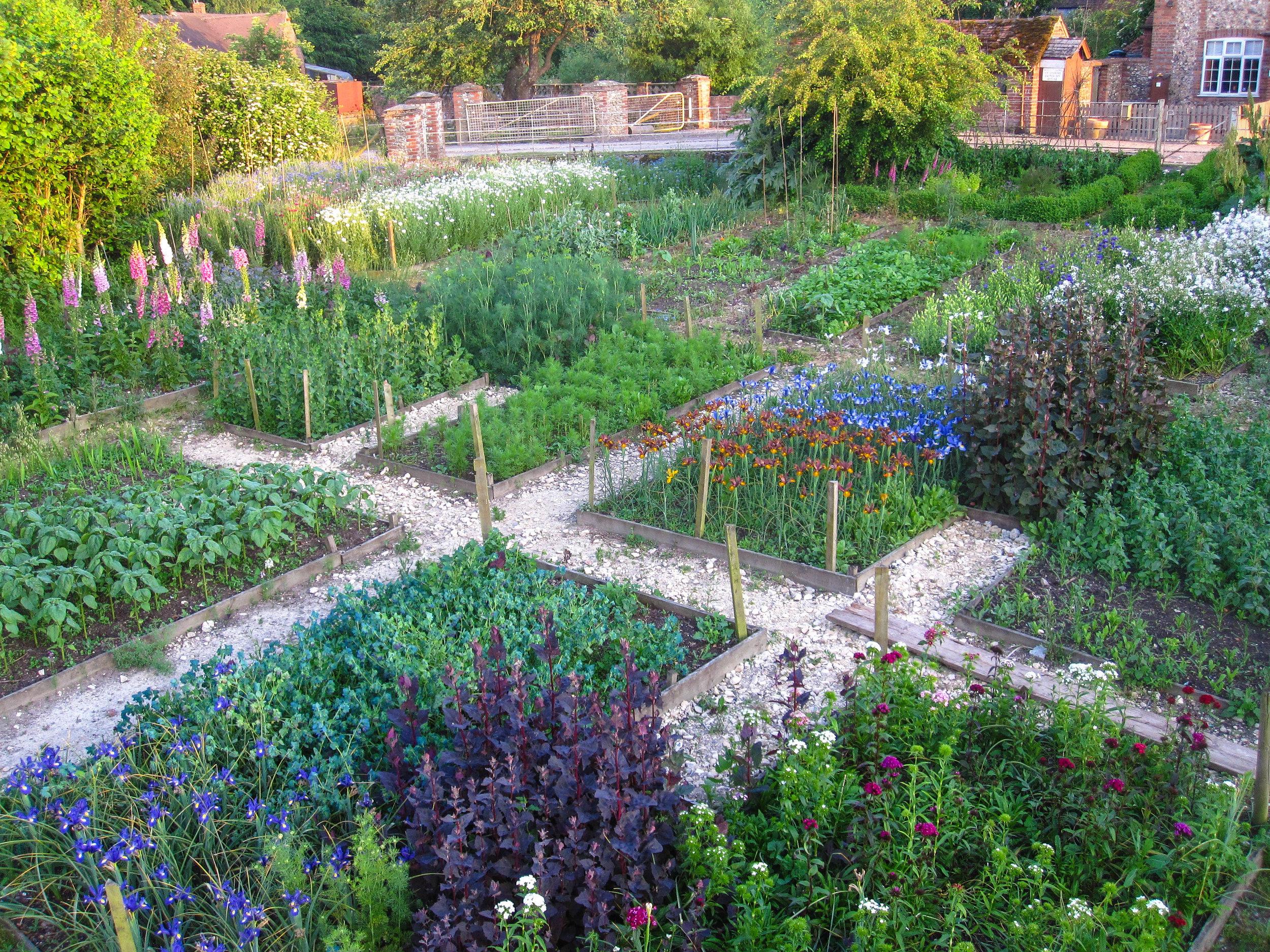 learning garden-1595.jpg