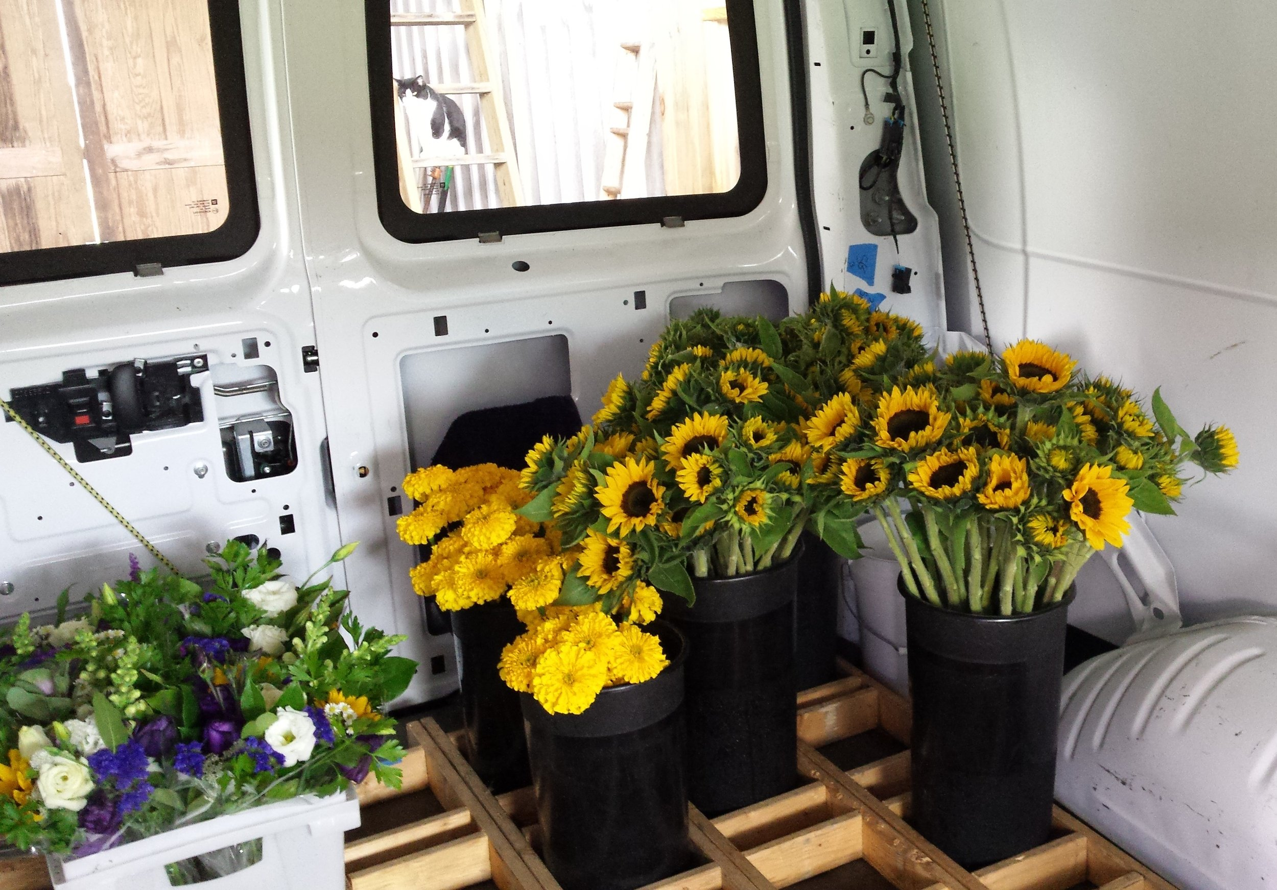 Brilliant Tips For Transporting Flowers From Your Farm