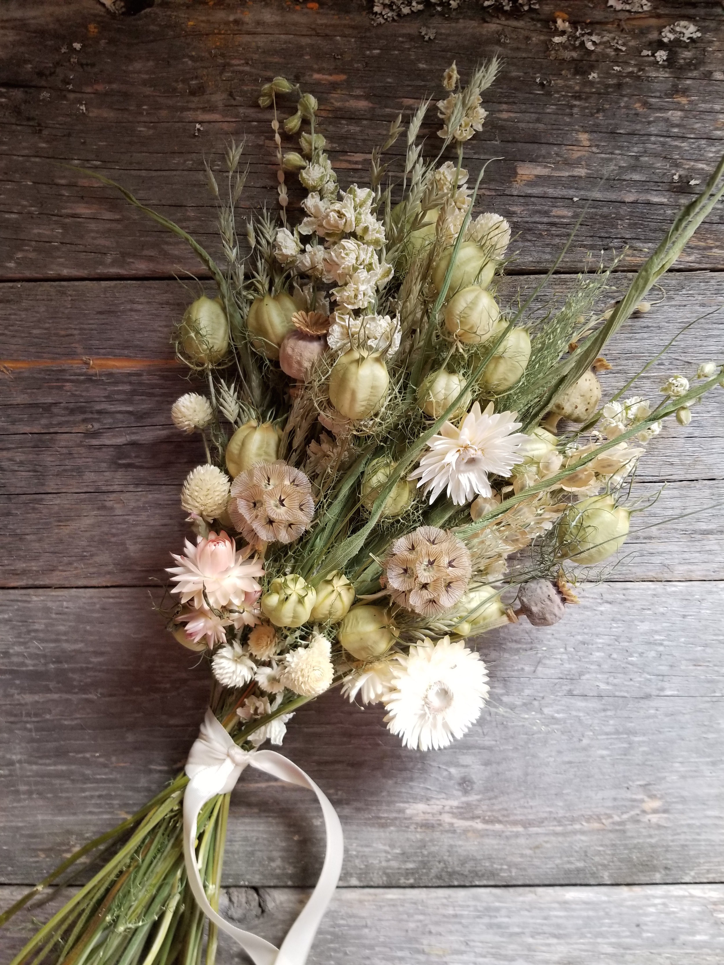 I made this posey for a pop-up market this winter. It has a background of green nigella pods and is accented with white larkspur, strawflowers and gomphrena. I added frosted explosion grass for an airy texture and some poppy and star flower pods for interest.