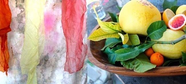 slow-fashion-sasha-duerr-citrus-dyes.jpg