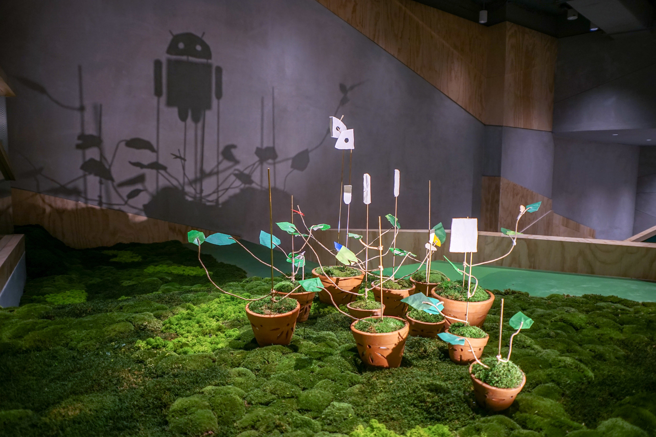 Sprouts - Shadow Art Installation  @ Google Singapore