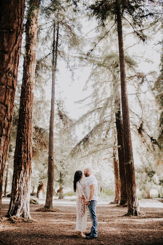 014-california-engagement-shoot-redwoods-san-diego.jpg