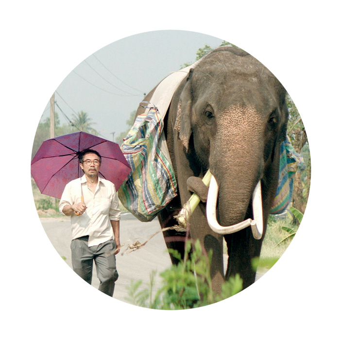 """""""From now on it's just you and me."""" Two peas in a pod, """"old, fat and homeless,"""" umbrella aloft.  Returning to homeland, peace, possibly, and nature, film 44,   POP AYE   (D Kirsten Tan) """"….because elephants, both in Thailand and in the wider world, …. kind of symbolise hopelessness. So much of the forest in Thailand has been cut down…. So then a lot of times these elephants have become forced to live among men. So then this idea of finding a home and that home still exists also came about when I was thinking about elephants."""" —Kristen Tan (in interview with Jeremy Elphick, 4:3, 2017)"""