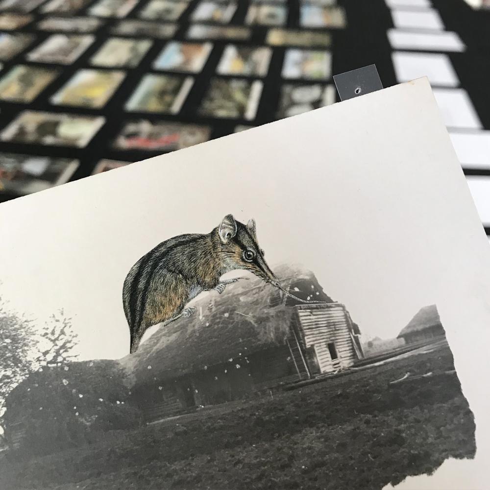 gracialouise_postcardcollages39.jpg