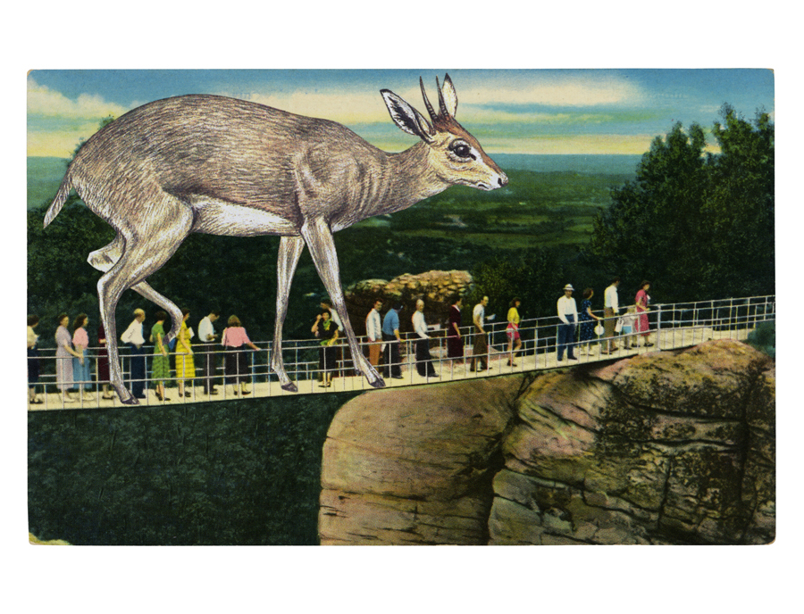 Gracia Haby,  Keeping in line ,   2012, postcard collage