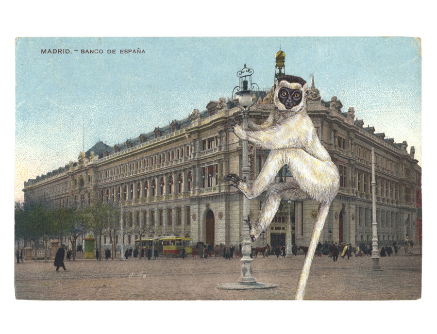 Gracia Haby,  From thrill to thrill, Verreaux's Sifaka ,   2012, postcard collage