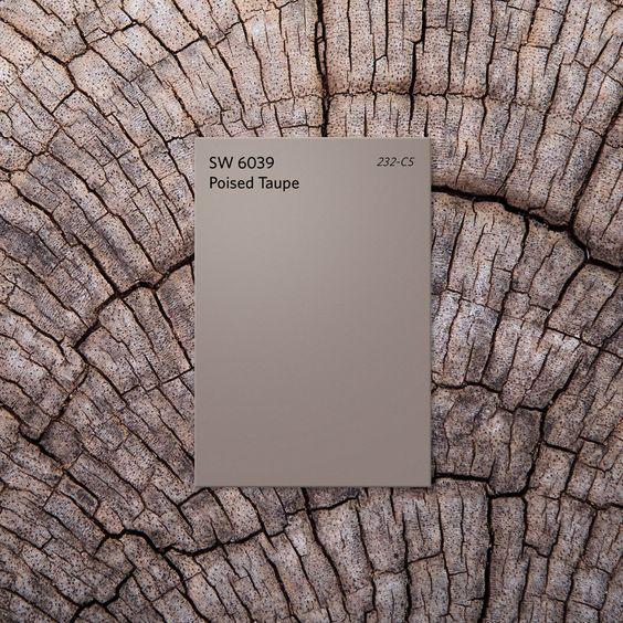 taupe.tree.jpg