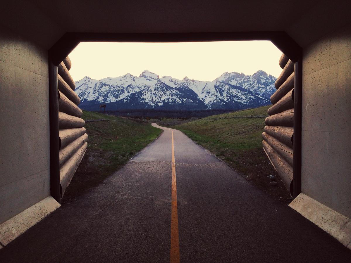 blomborg_portfolio_american_roadtrip-37.jpg