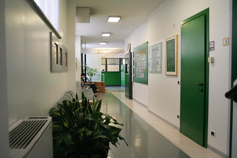 1-Top-Physio-Network-i-Centri-Nord-salus-istituto-radiologico-e-fisioterapico-belluno.jpg