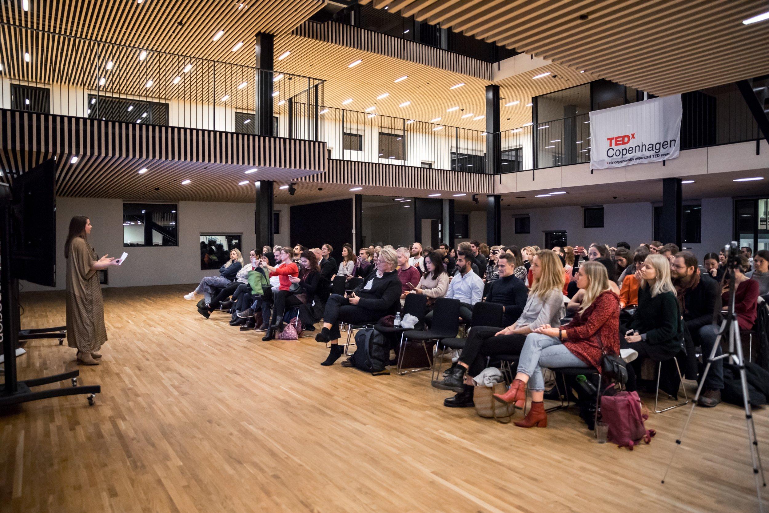 TEDx Antesa Jensen workshop-51 small.jpg