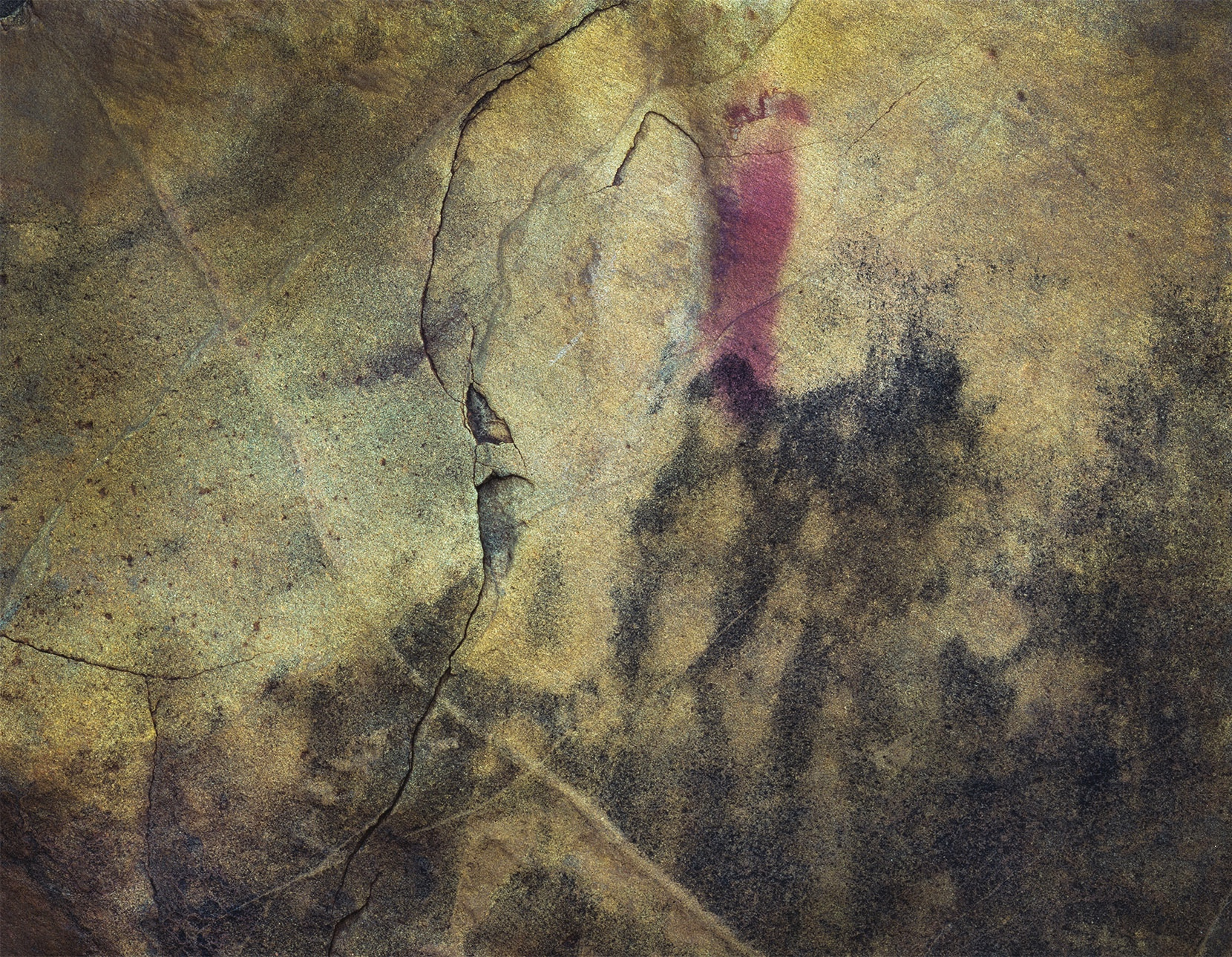 1.+Untitled.+Silver+gelatin+negative%2C+pigment+ink+on+cotton+paper.+110cm+x+156cm%2C+20193.jpg