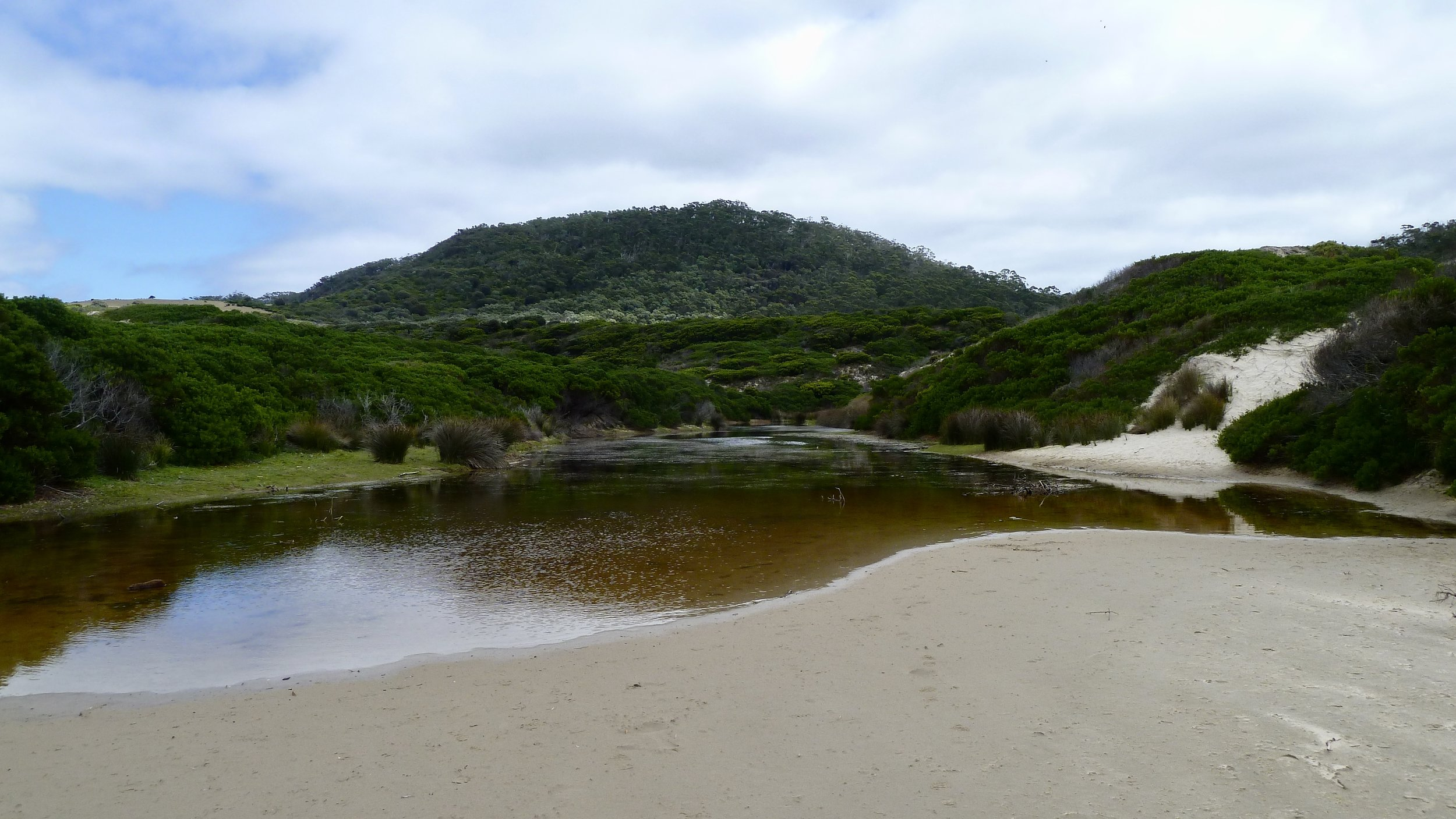 Roaring Beach Conservation Area
