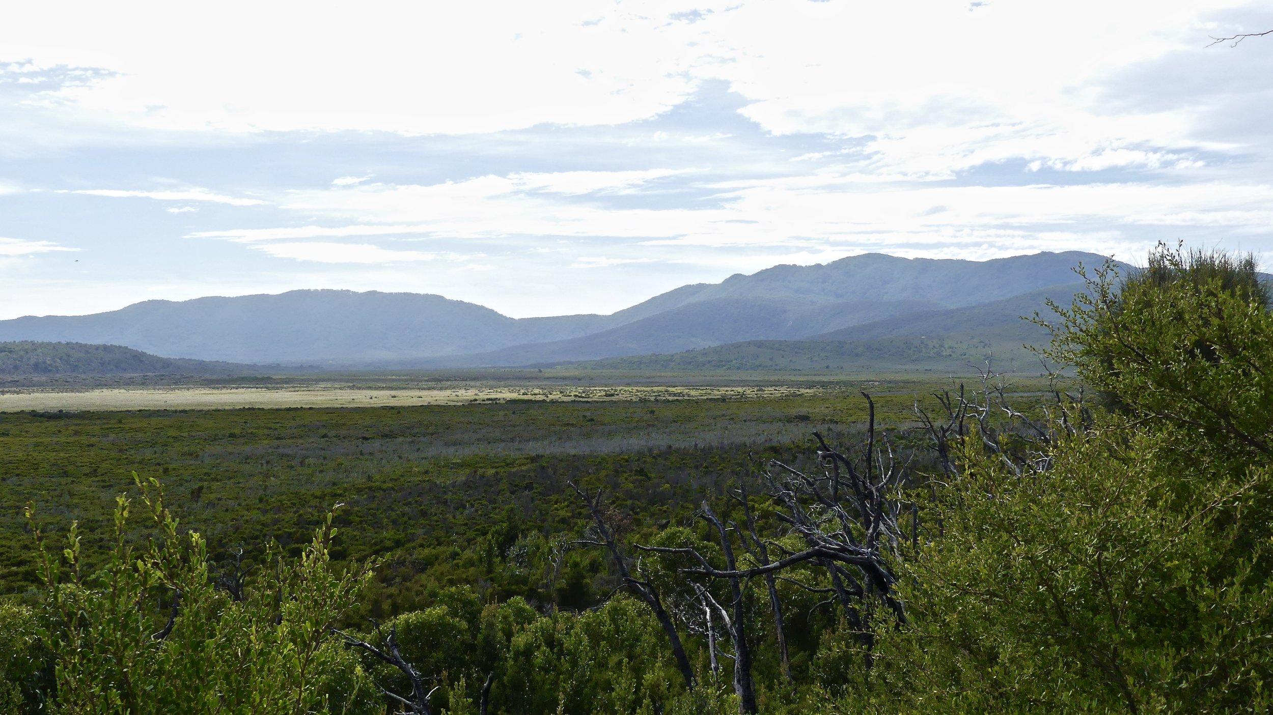 Looking to the Vereker Range