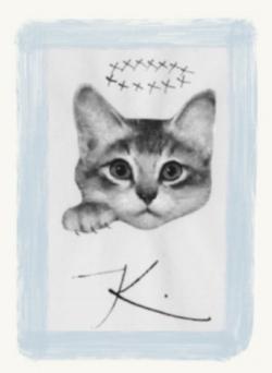 Kitty image.jpg