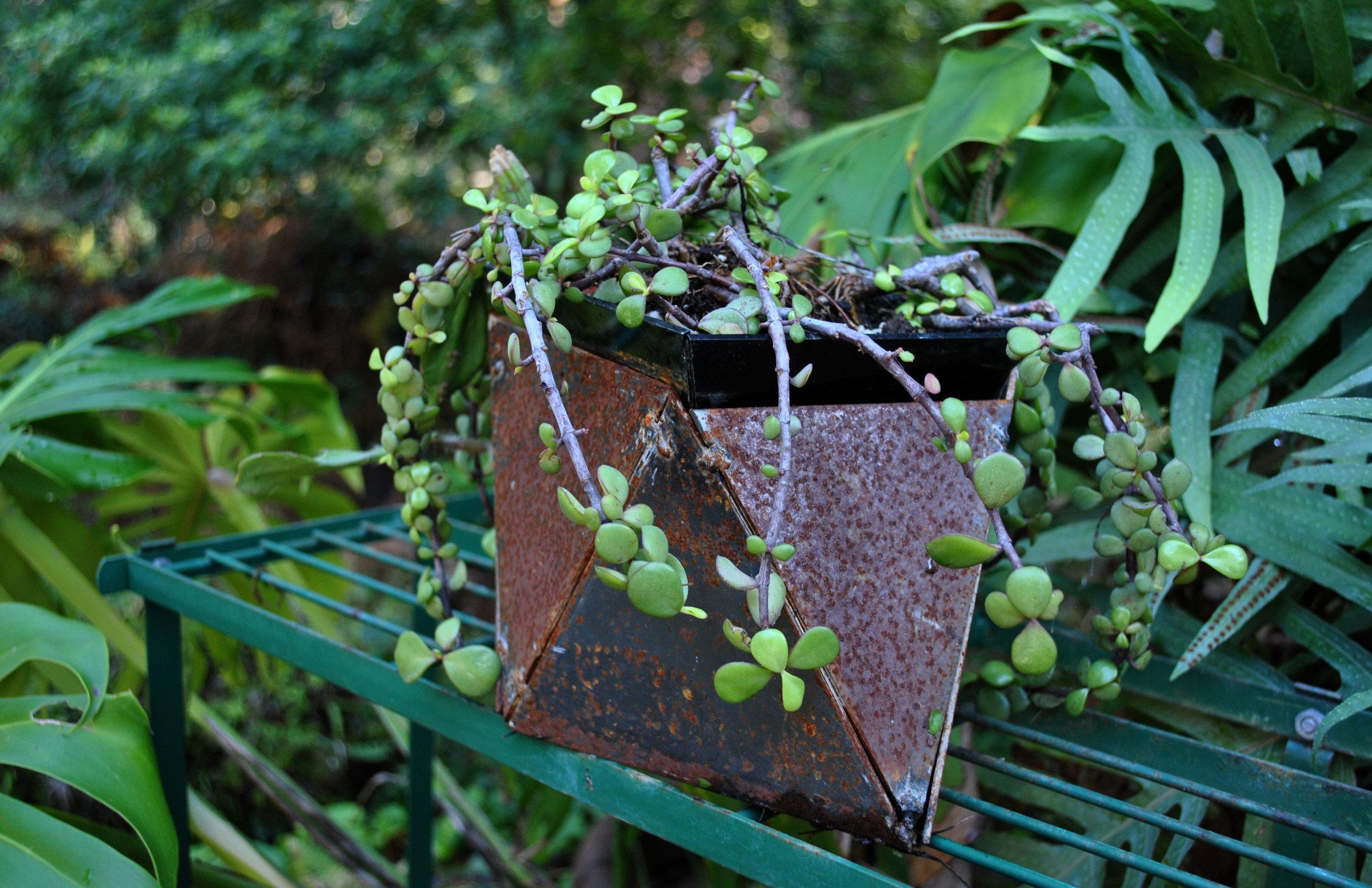 Plantagon6.jpg