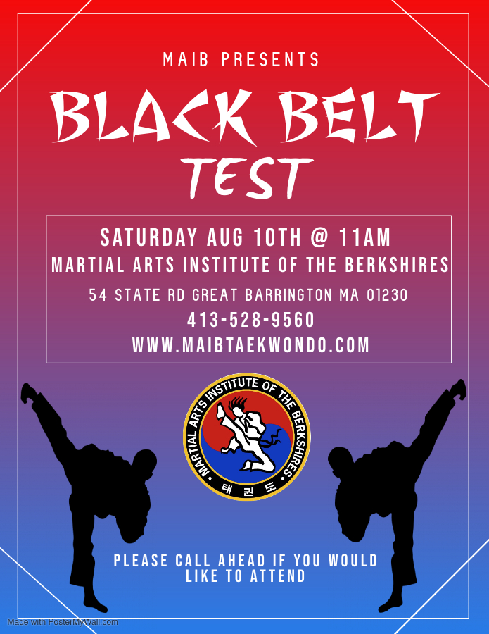 Copy of Martial Arts Poster - Made with PosterMyWall (4).jpg