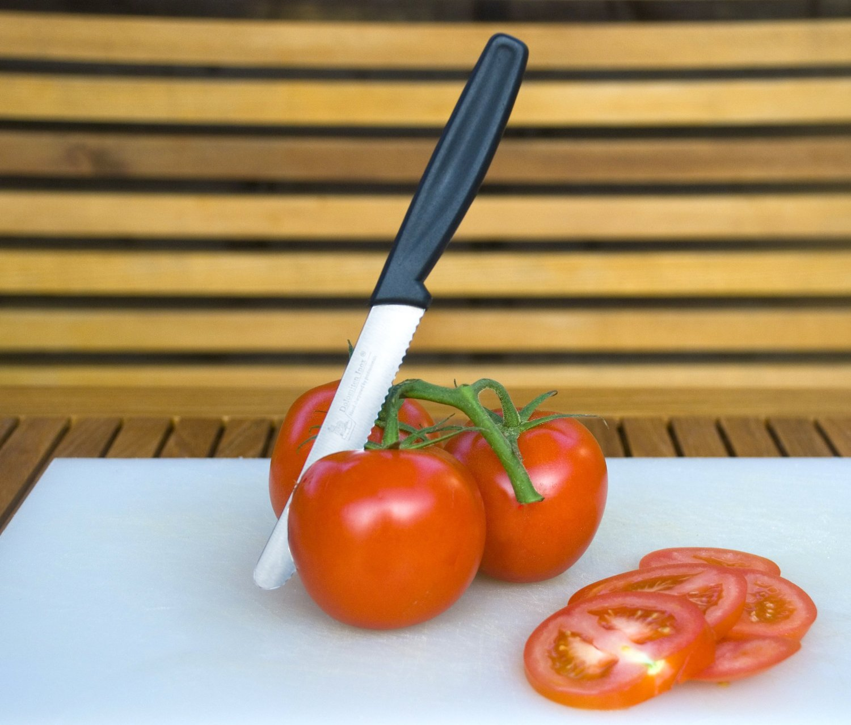 TOMATO KNIFE 11CM BY DOLOMITEN INOX