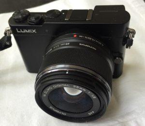 Panasonic GM-5 with 12-32mm, f/4-5.6 lens