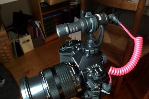 E-M1 with Rode VideoMicro mic without the wind shield.
