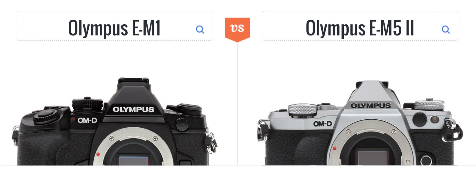 Should I replace my Olympus OM-D E-M1 with an E-M5 II?