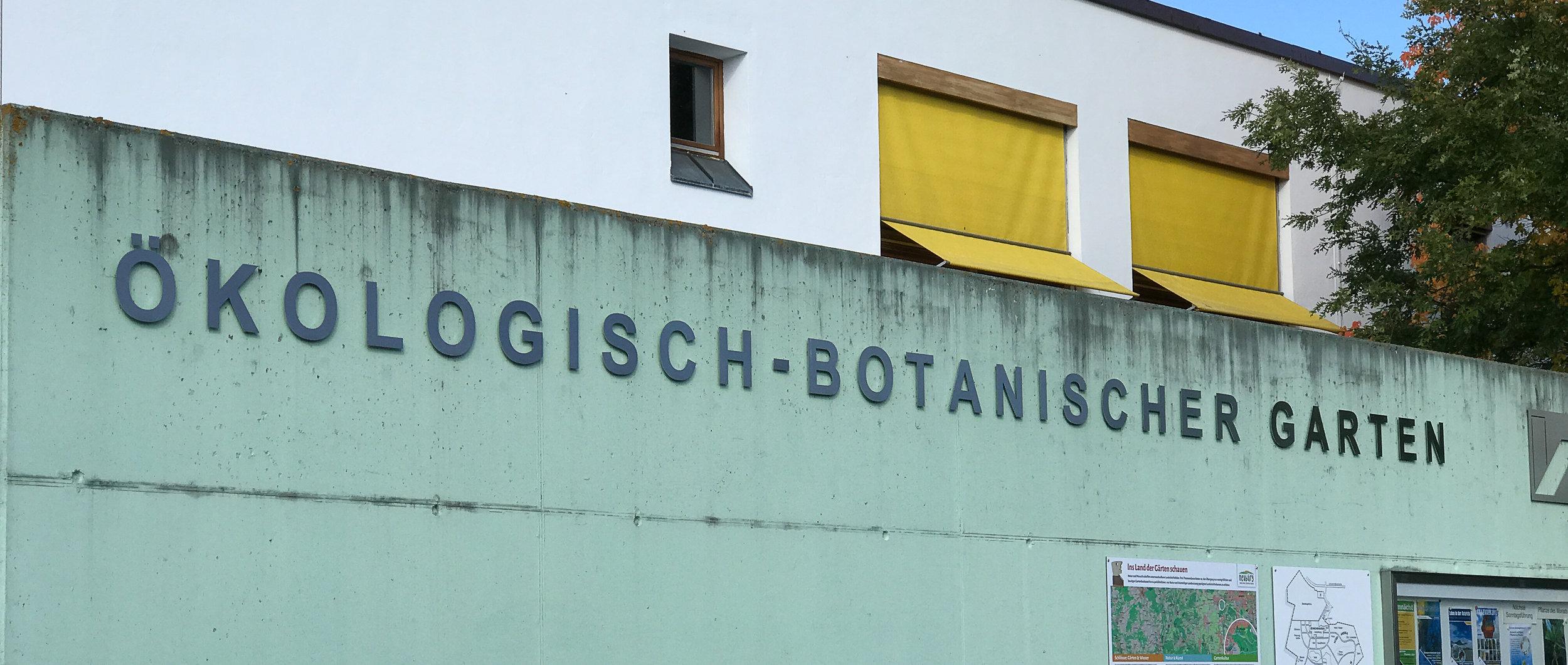 Bayreuth Street-3.jpg