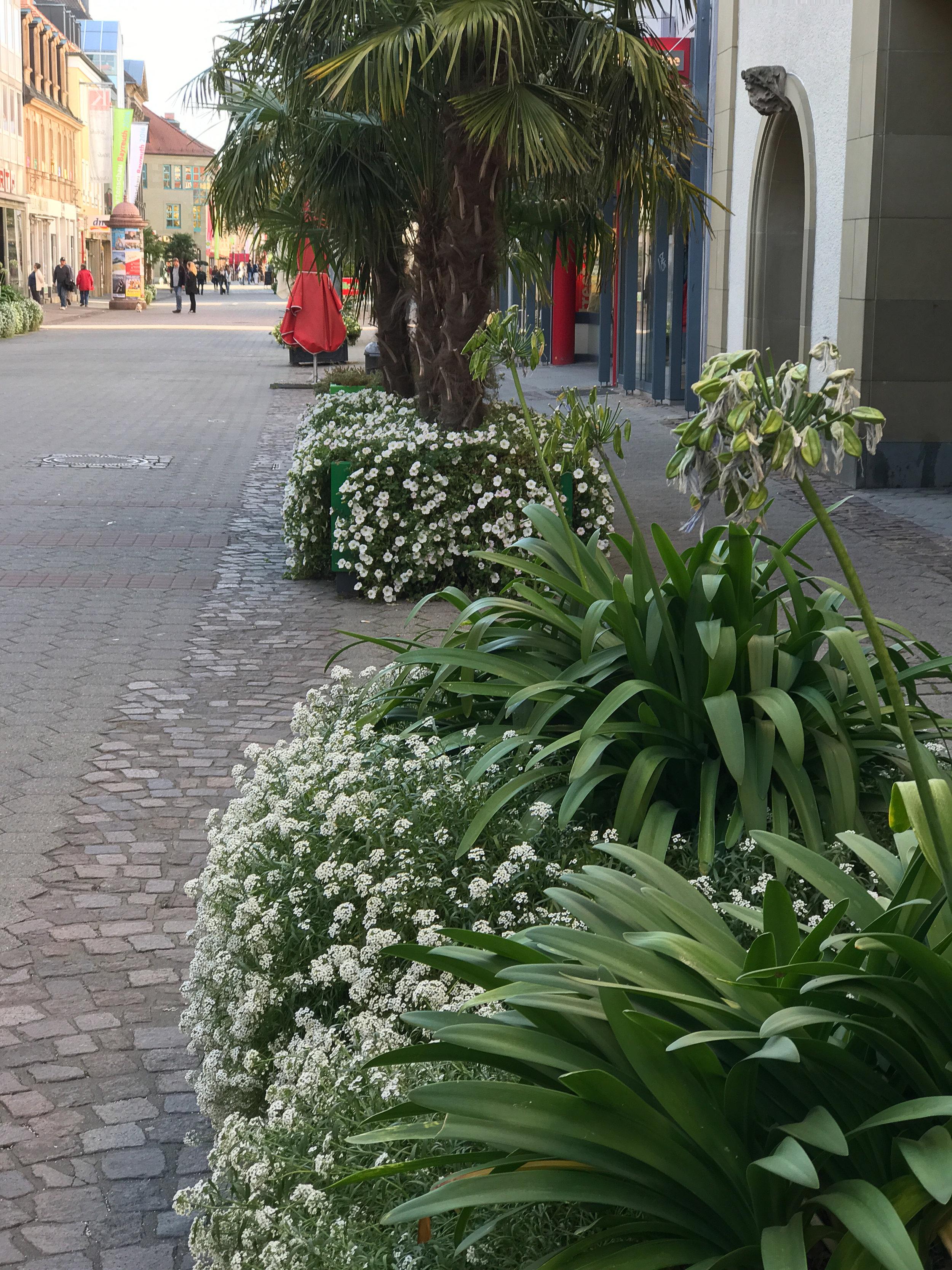 Bayreuth Street-15.jpg
