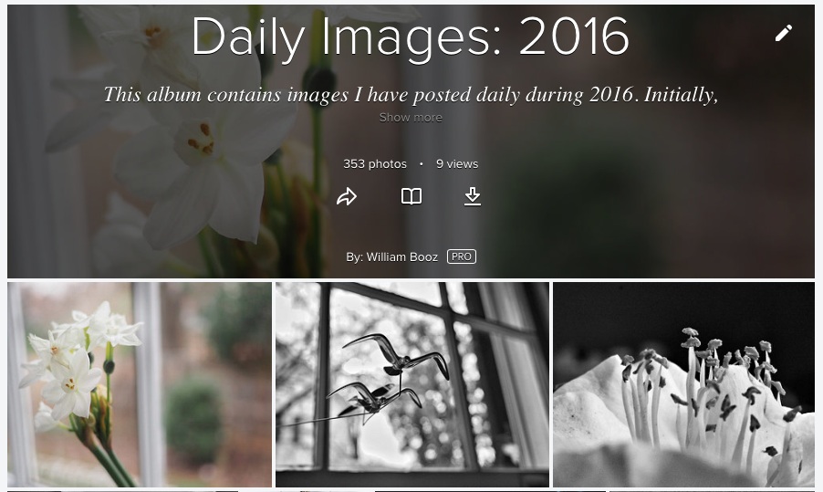 My Flickr album for 2016 Project