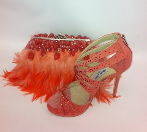 Debbie D's Story - Custom ostrich bag to coordinate with shoes for Debbie D.