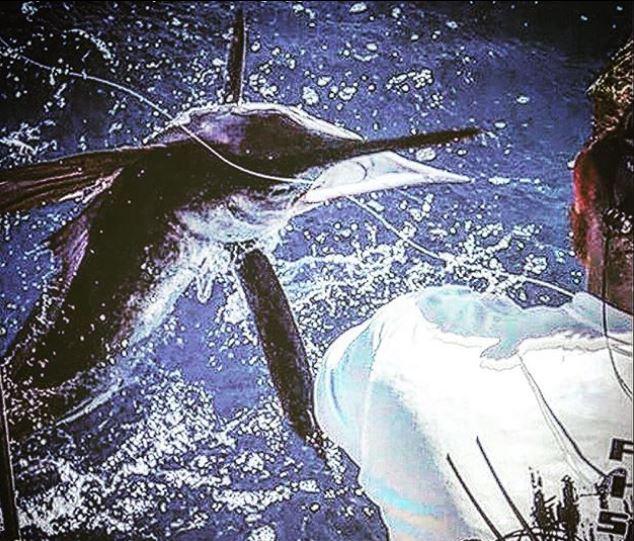 billfishing at its best - Stuart Big Game Fishing